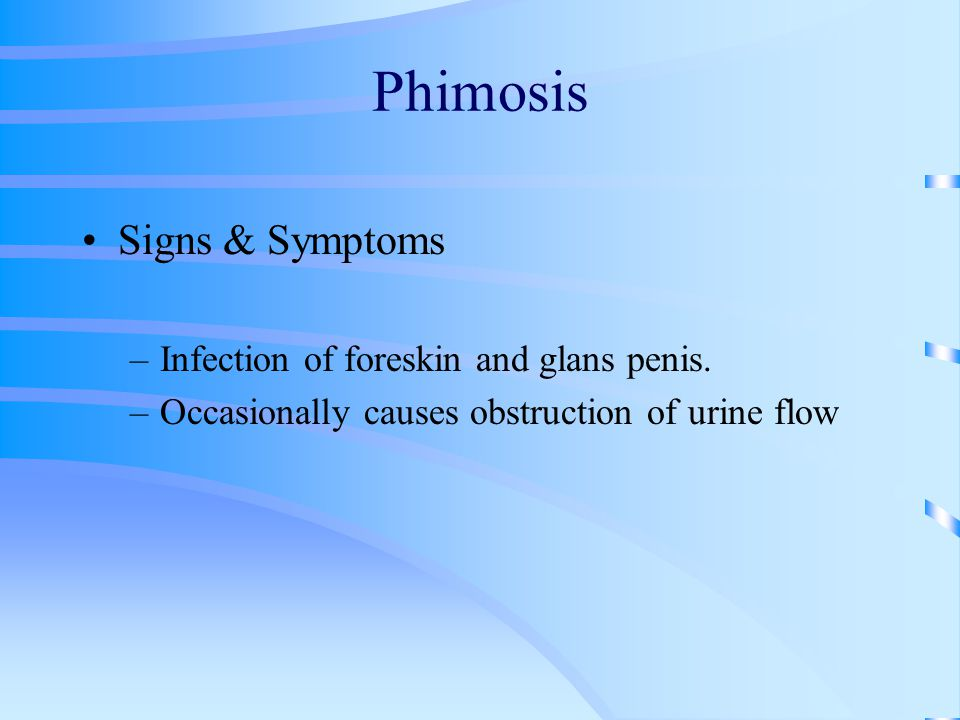Signs & Symptoms –Infection of foreskin and glans penis. –Occasionally causes obstruction of urine flow
