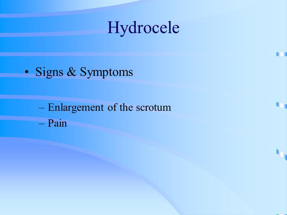 Signs & Symptoms –Enlargement of the scrotum –Pain