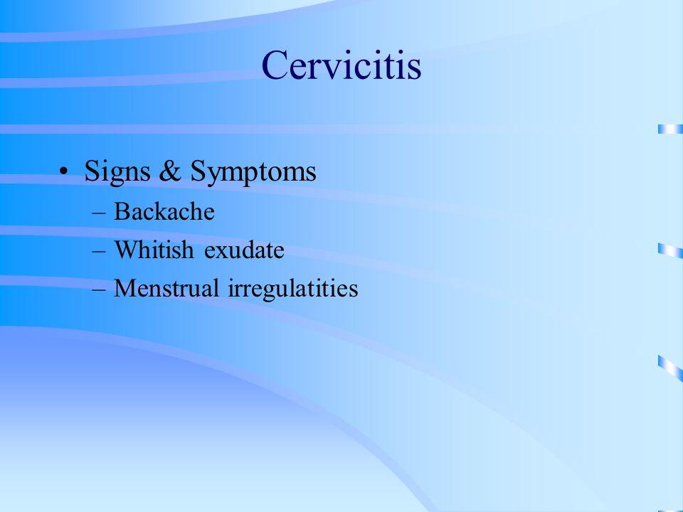 Cervicitis Signs & Symptoms –Backache –Whitish exudate –Menstrual irregulatities