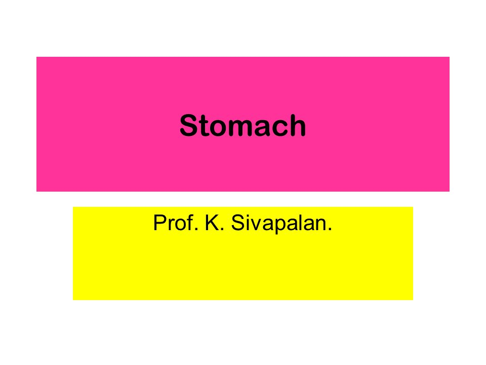 Stomach Prof. K. Sivapalan.