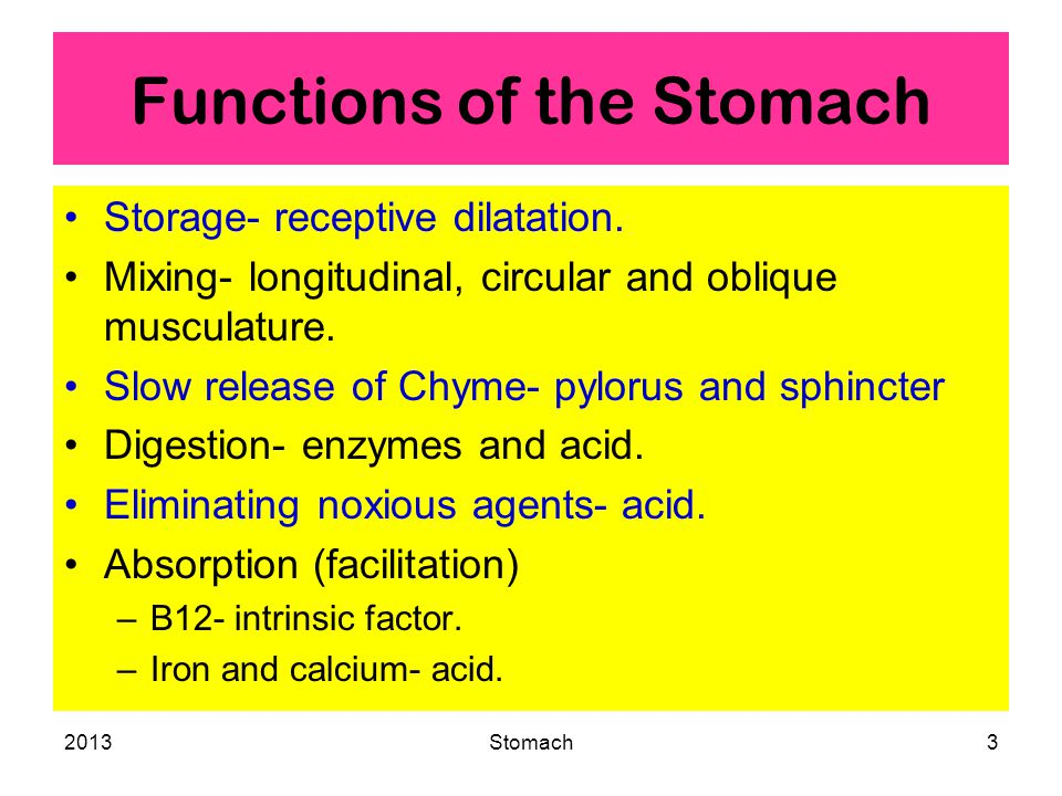 2013Stomach4 Storage Function Plasticity- distention causes dilation without increase of pressure.