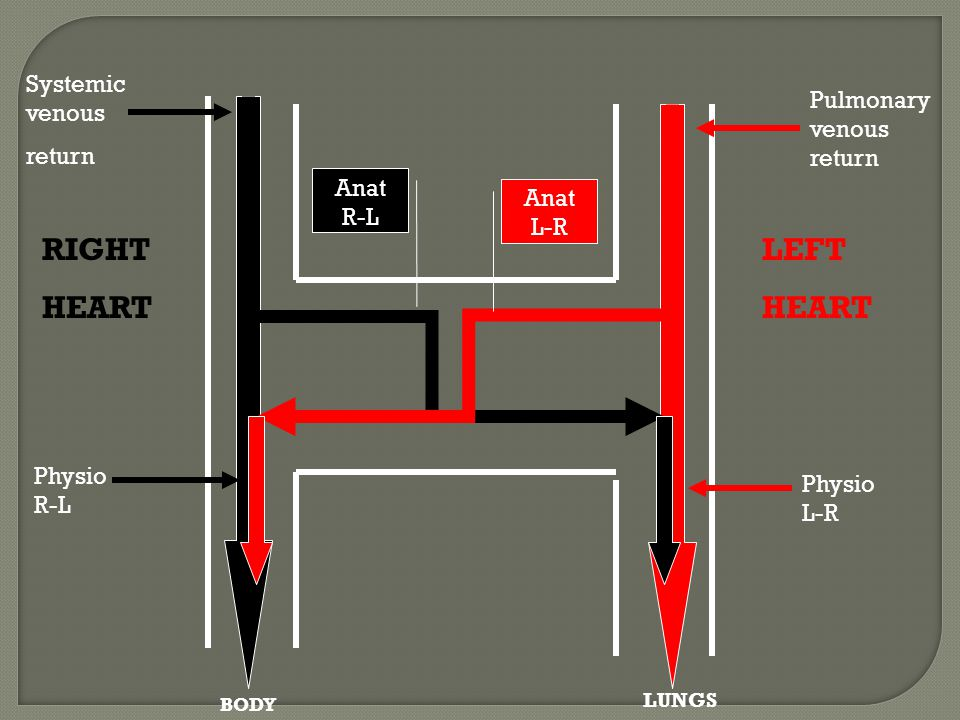 Systemic venous return Pulmonary venous return Anat R-L Anat L-R Physio R-L Physio L-R BODY LUNGS RIGHT HEART LEFT HEART
