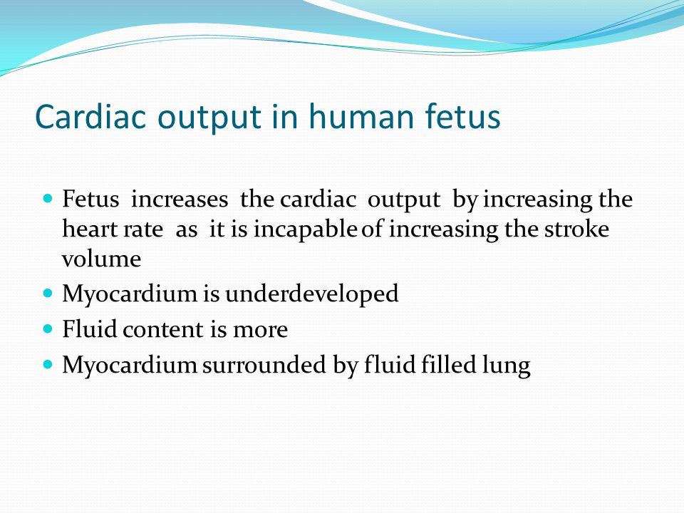 Cardiac output in human fetus Fetus increases the cardiac output by increasing the heart rate as it is incapable of increasing the stroke volume Myoca