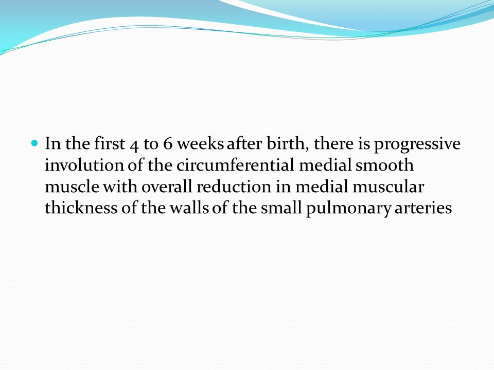 In the first 4 to 6 weeks after birth, there is progressive involution of the circumferential medial smooth muscle with overall reduction in medial mu