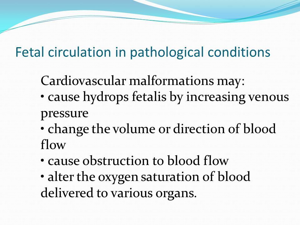 Fetal circulation in pathological conditions Cardiovascular malformations may: cause hydrops fetalis by increasing venous pressure change the volume o
