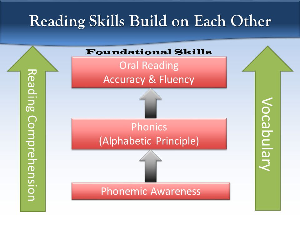 Vocabulary Phonemic Awareness Phonics (Alphabetic Principle) Phonics (Alphabetic Principle) Oral Reading Accuracy & Fluency Oral Reading Accuracy & Fluency Reading Skills Build on Each Other Reading Comprehension Foundational Skills