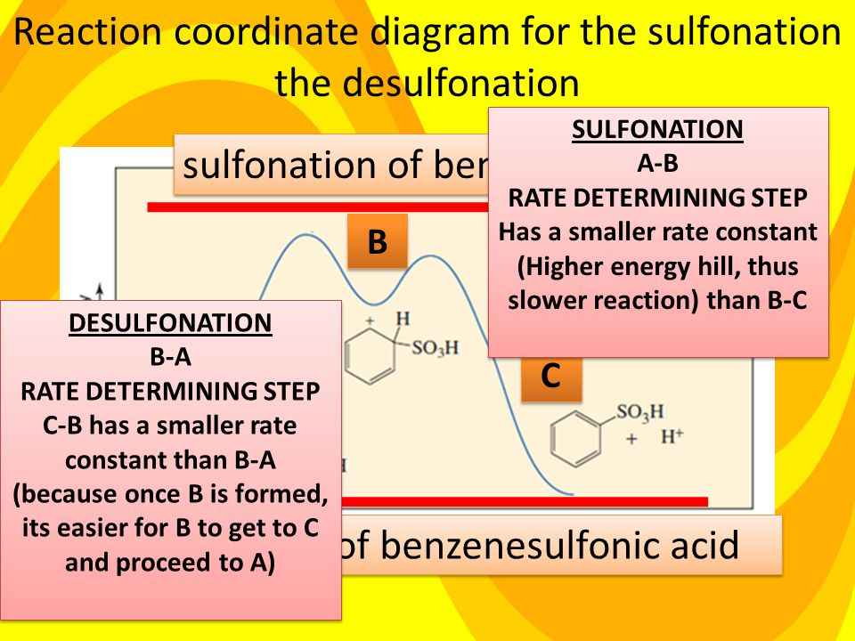 sulfonation of benzene Desulfonation of benzenesulfonic acid Reaction coordinate diagram for the sulfonation the desulfonation A A B B C C SULFONATION A-B RATE DETERMINING STEP Has a smaller rate constant (Higher energy hill, thus slower reaction) than B-C SULFONATION A-B RATE DETERMINING STEP Has a smaller rate constant (Higher energy hill, thus slower reaction) than B-C DESULFONATION B-A RATE DETERMINING STEP C-B has a smaller rate constant than B-A (because once B is formed, its easier for B to get to C and proceed to A) DESULFONATION B-A RATE DETERMINING STEP C-B has a smaller rate constant than B-A (because once B is formed, its easier for B to get to C and proceed to A)