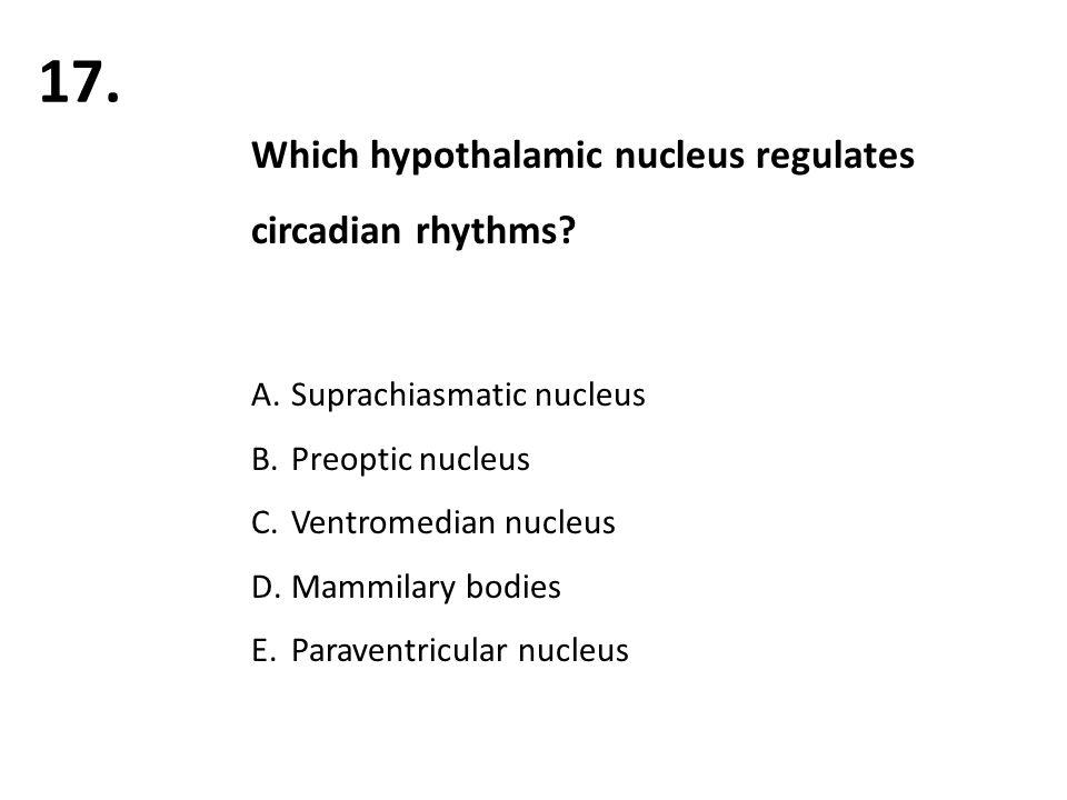 Which hypothalamic nucleus regulates circadian rhythms.