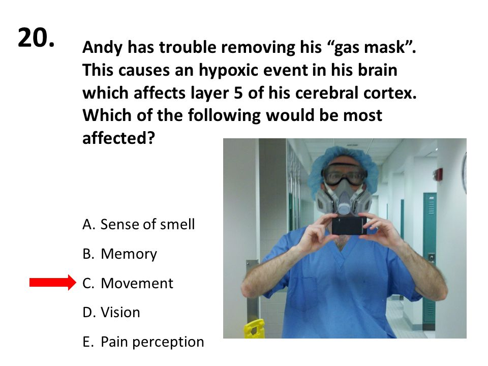 """Andy has trouble removing his """"gas mask"""". This causes an hypoxic event in his brain which affects layer 5 of his cerebral cortex. Which of the followi"""