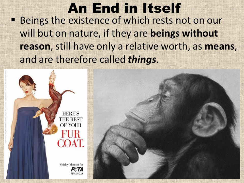An End in Itself  Beings the existence of which rests not on our will but on nature, if they are beings without reason, still have only a relative worth, as means, and are therefore called things.