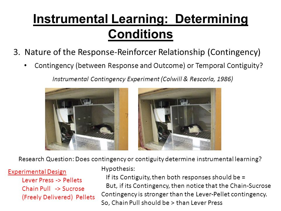 Instrumental Learning: Determining Conditions 3.