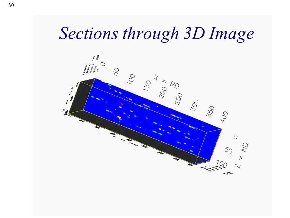80 Sections through 3D Image
