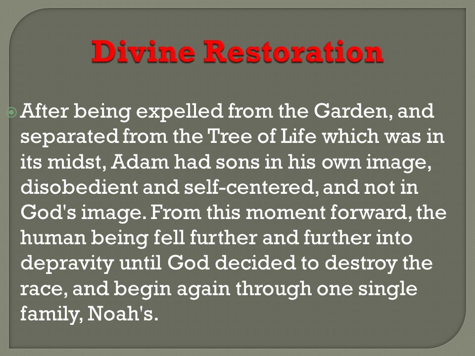 Divine Restoration  The covenant of the rainbow (Gen.