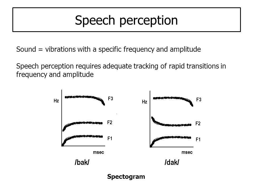 Speech perception tests - Words in noise - Sentences in noise - Categorical perception (bA- dA)
