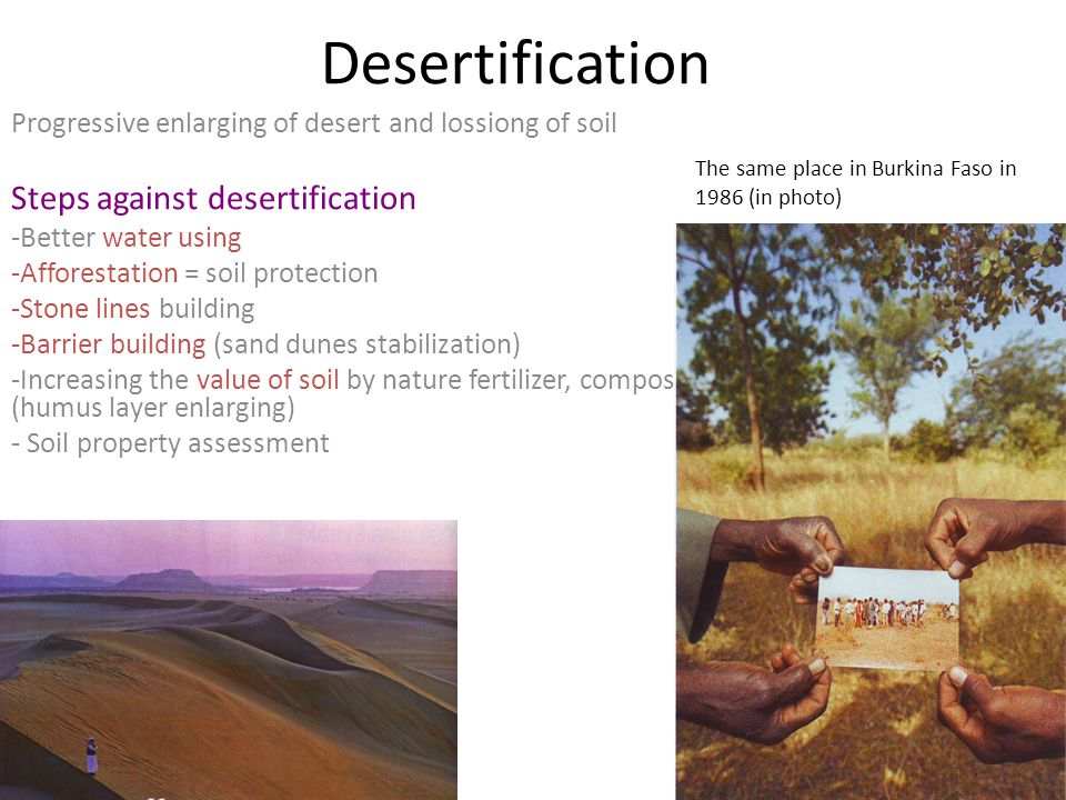 Desertification Progressive enlarging of desert and lossiong of soil Steps against desertification -Better water using -Afforestation = soil protection -Stone lines building -Barrier building (sand dunes stabilization) -Increasing the value of soil by nature fertilizer, composting (humus layer enlarging) - Soil property assessment The same place in Burkina Faso in 1986 (in photo)
