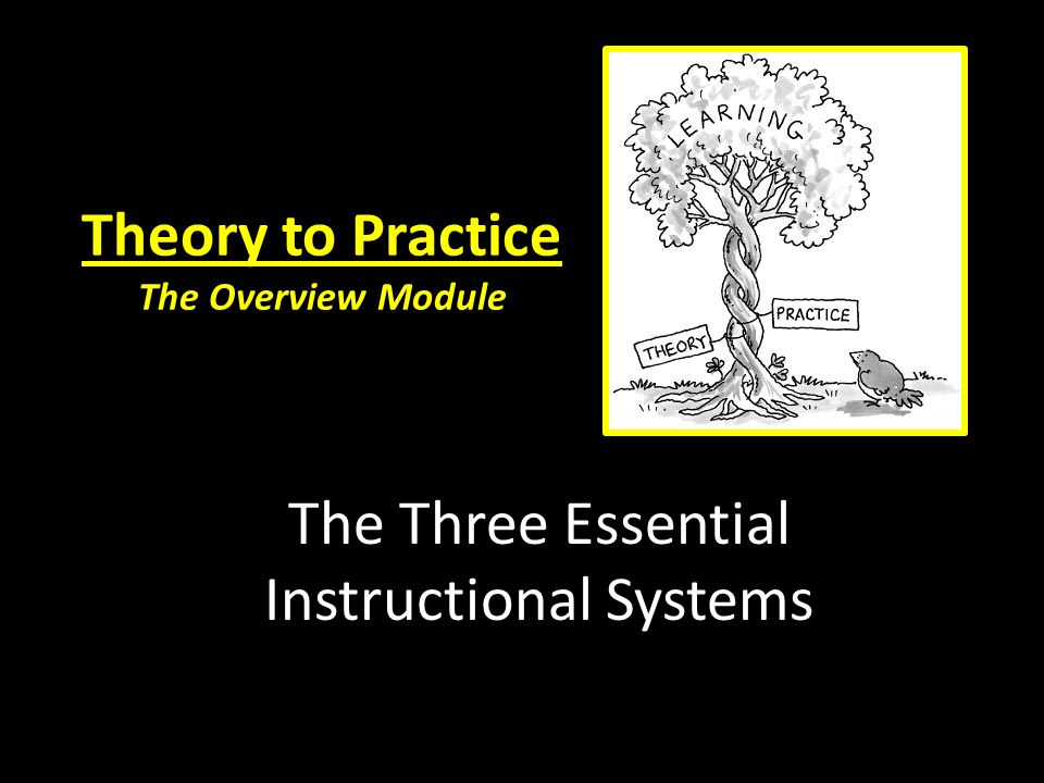 Theory to Practice The Overview Module The Three Essential Instructional Systems