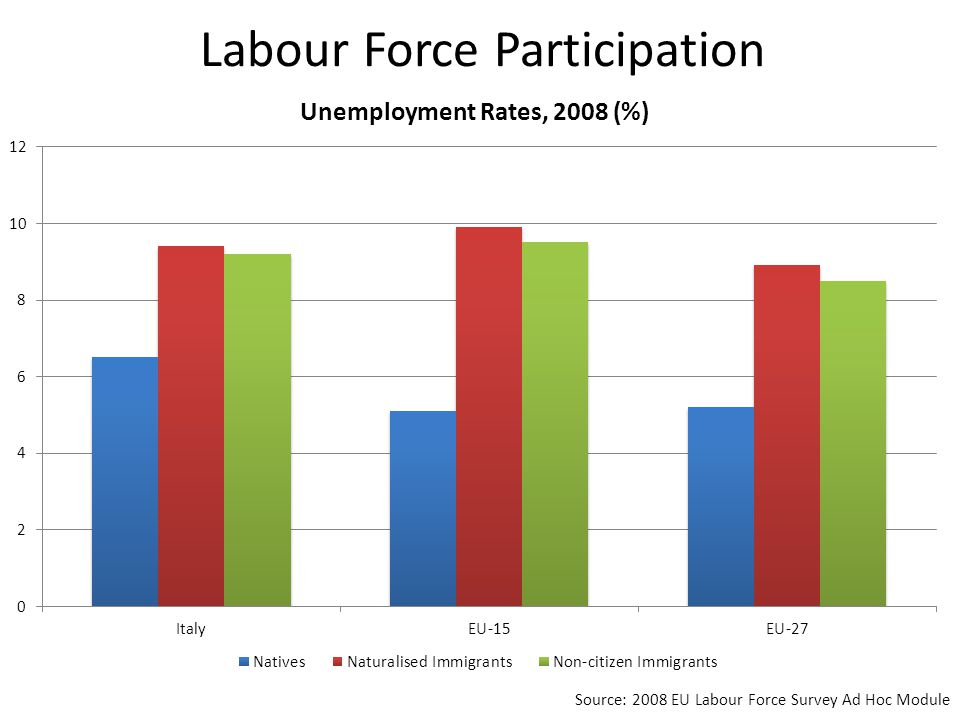 Labour Force Participation Source: 2008 EU Labour Force Survey Ad Hoc Module