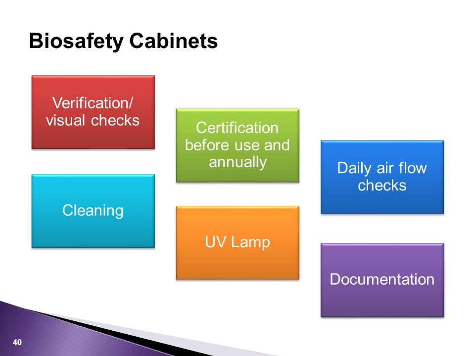 Biosafety Cabinets Verification/ visual checks Certification before use and annually Daily air flow checks Cleaning UV Lamp Documentation 40