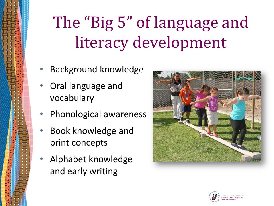 "The ""Big 5"" of language and literacy development Background knowledge Oral language and vocabulary Phonological awareness Book knowledge and print con"