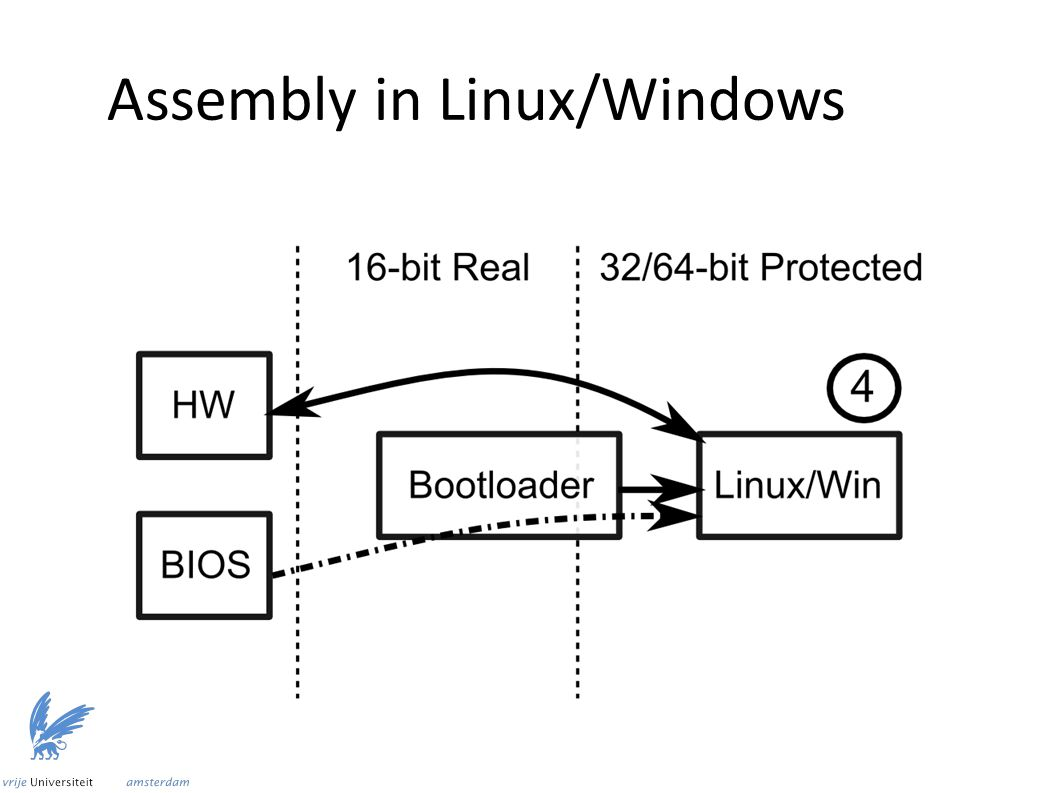 Assembly in Linux/Windows
