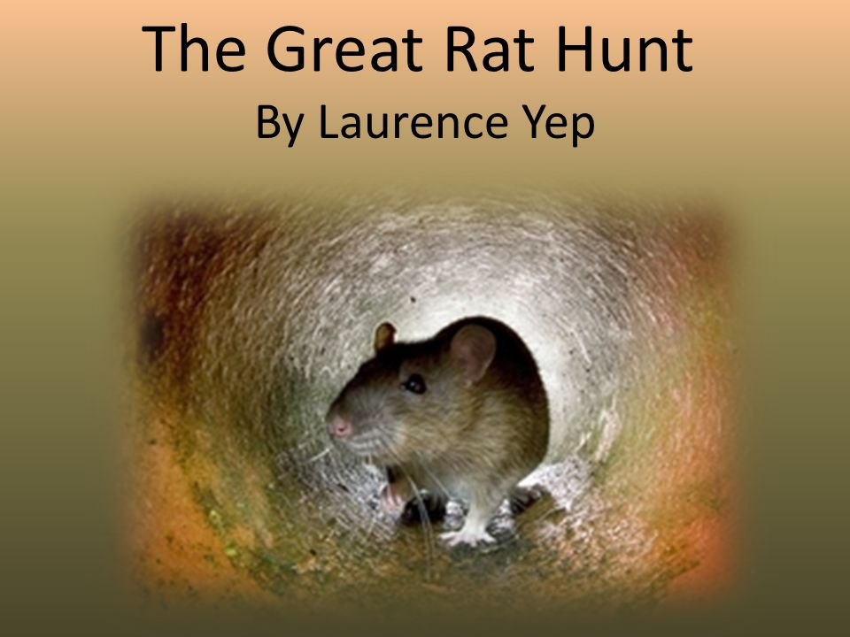 The Great Rat Hunt By Laurence Yep