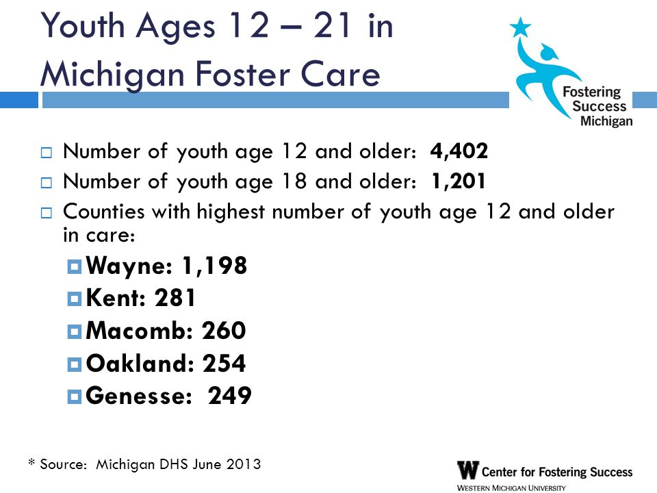 Youth Ages 12 – 21 in Michigan Foster Care  Number of youth age 12 and older: 4,402  Number of youth age 18 and older: 1,201  Counties with highest number of youth age 12 and older in care:  Wayne: 1,198  Kent: 281  Macomb: 260  Oakland: 254  Genesse: 249 * Source: Michigan DHS June 2013