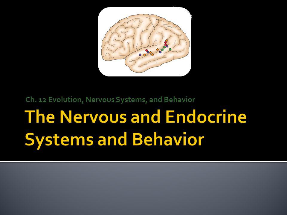 Ch. 12 Evolution, Nervous Systems, and Behavior