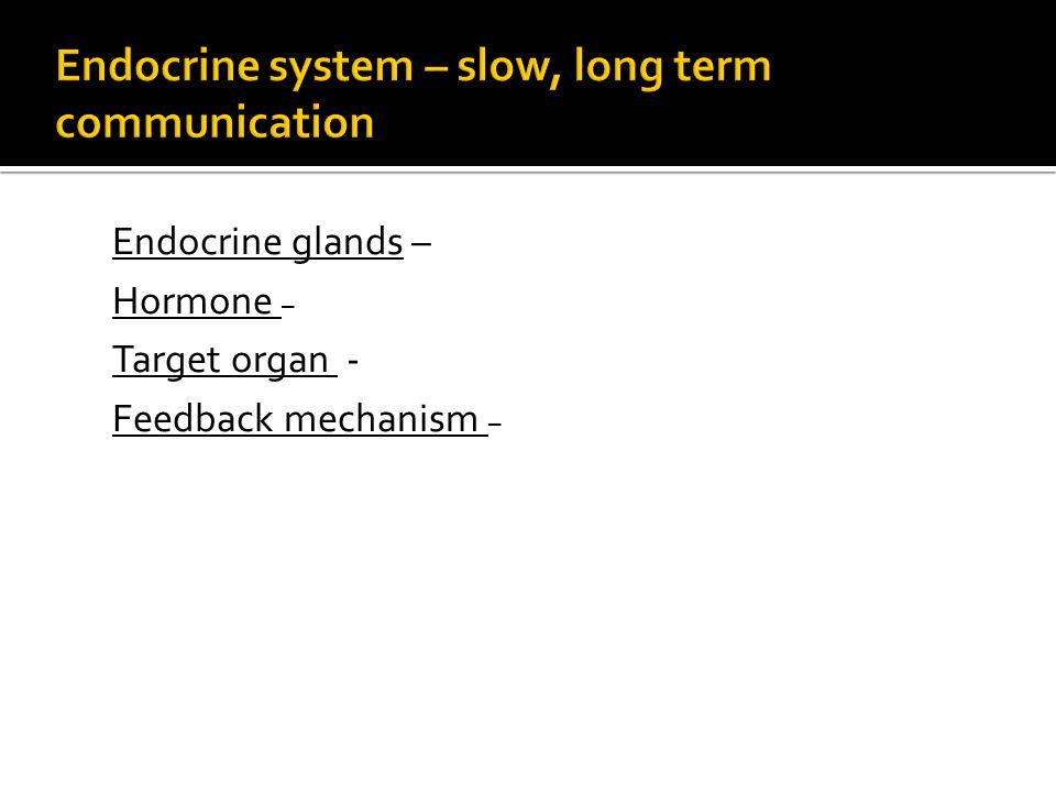 Endocrine glands – Hormone – Target organ - Feedback mechanism –