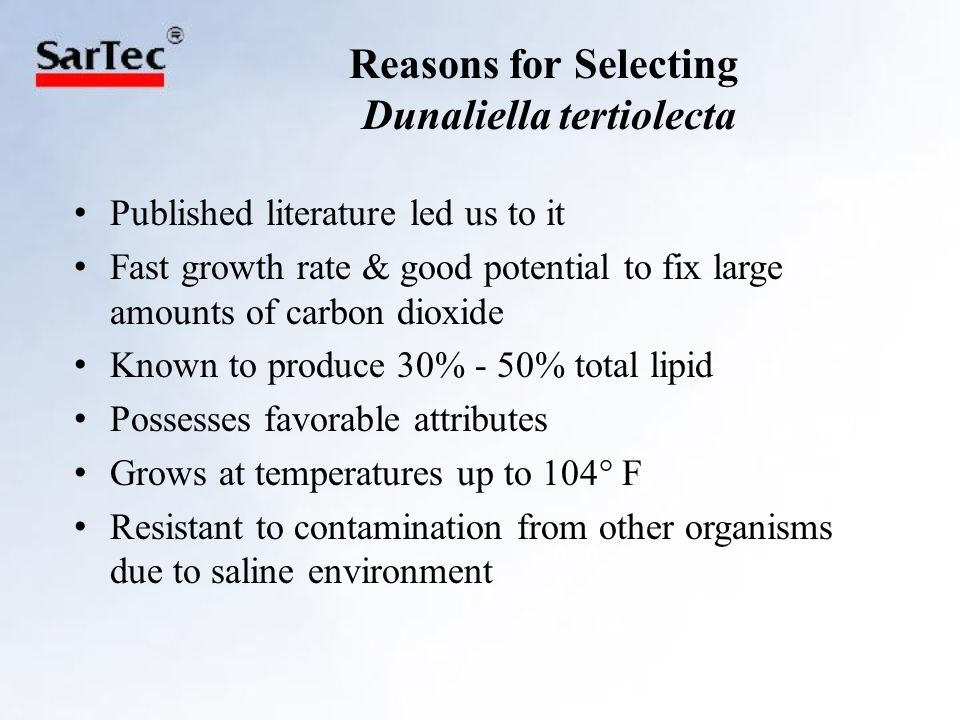 Dunaliella tertiolecta