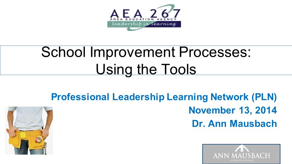 Professional Leadership Learning Network (PLN) November 13, 2014 Dr. Ann Mausbach School Improvement Processes: Using the Tools