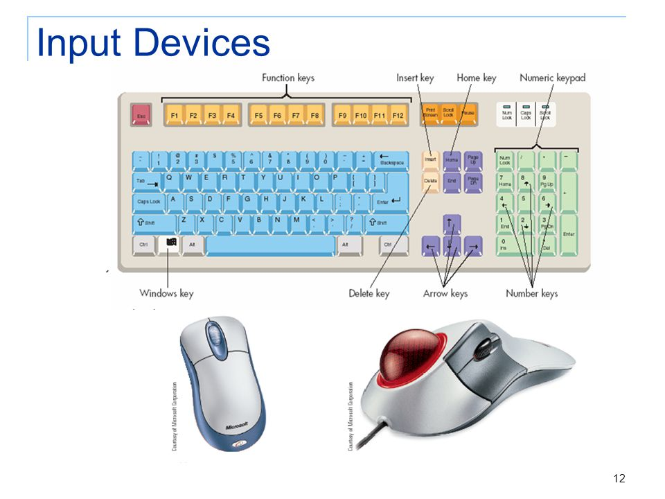12 Input Devices