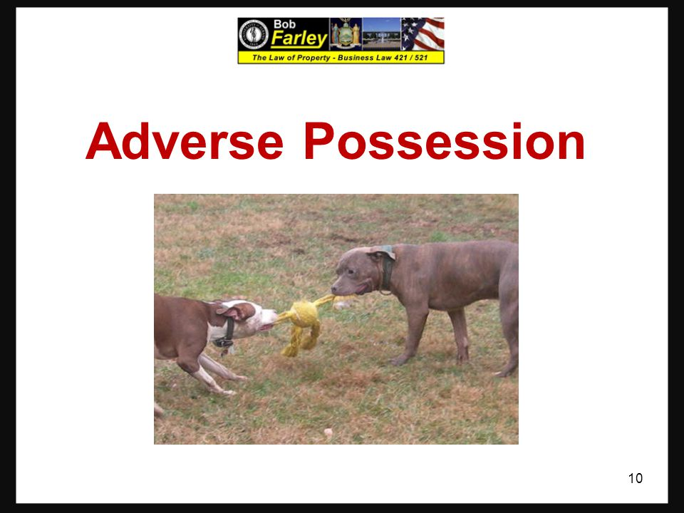 Adverse Possession 10