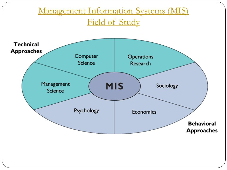 8 Management Information Systems (MIS) Field of Study