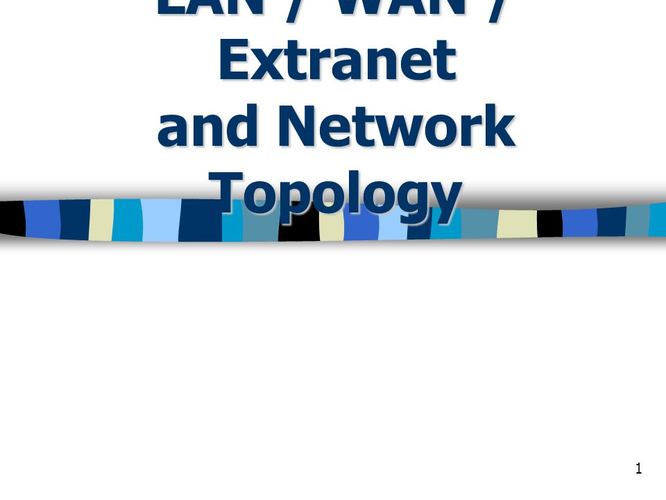 1 LAN / WAN / Extranet and Network Topology