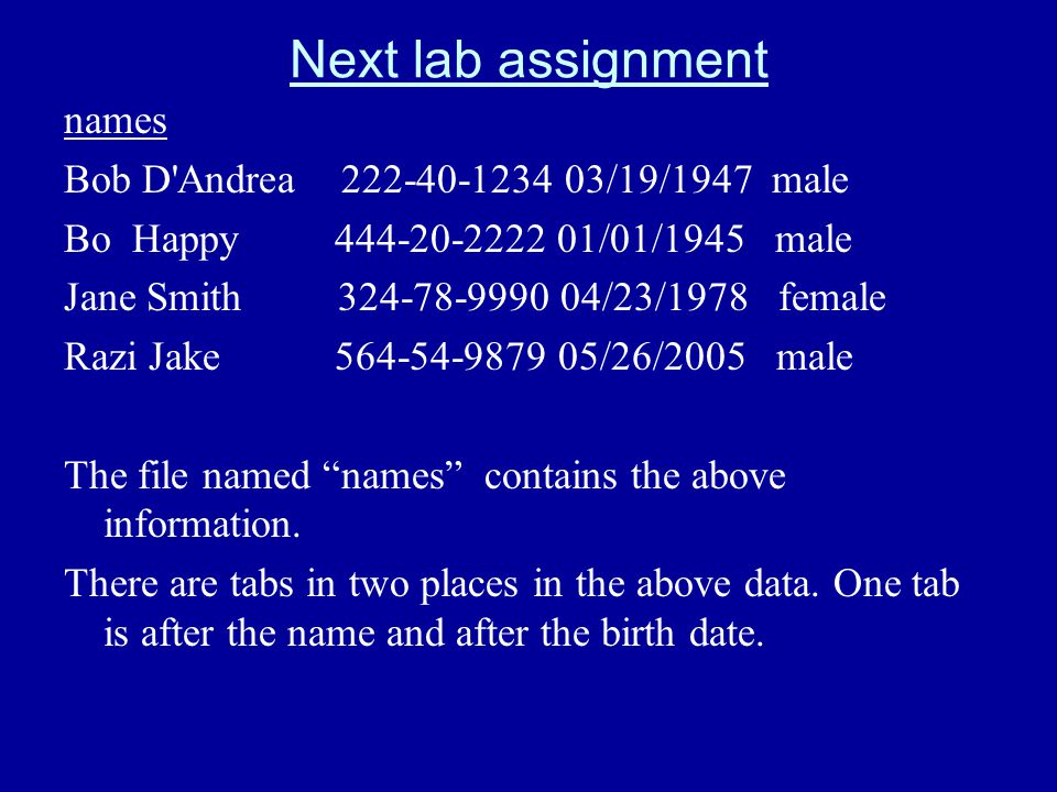 Next lab assignment names Bob D'Andrea 222-40-1234 03/19/1947 male Bo Happy 444-20-2222 01/01/1945 male Jane Smith 324-78-9990 04/23/1978 female Razi