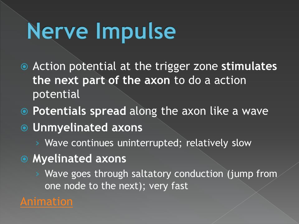  Action potential at the trigger zone stimulates the next part of the axon to do a action potential  Potentials spread along the axon like a wave 