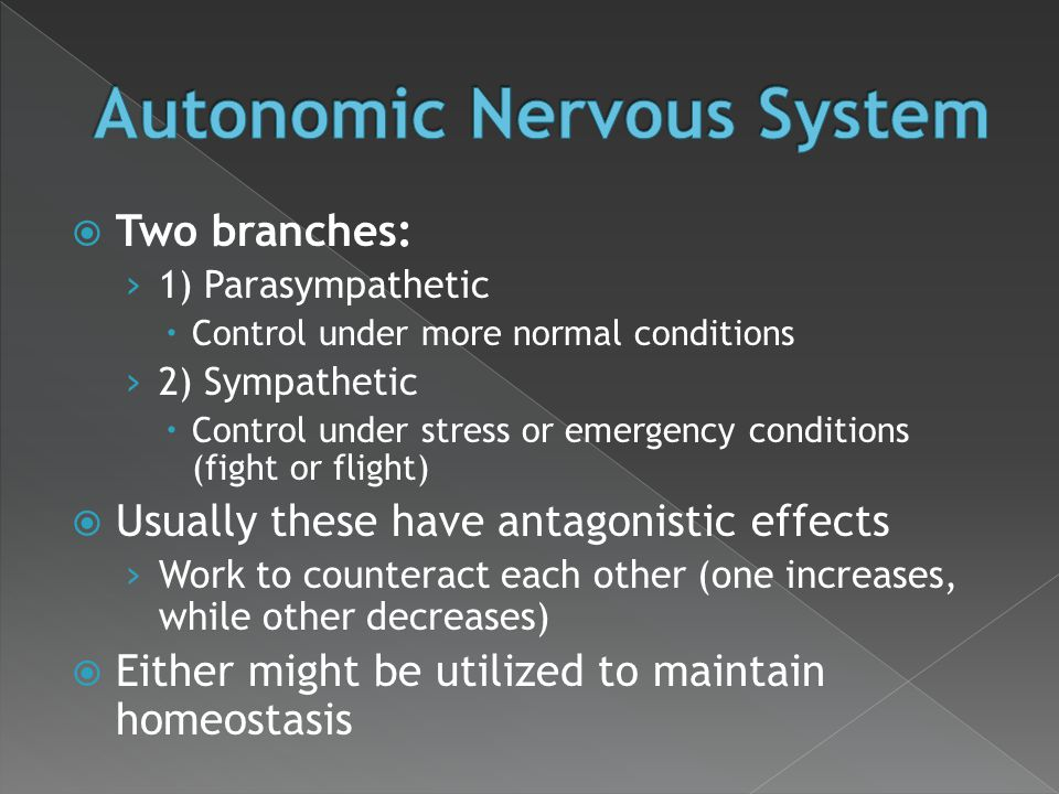  Two branches: › 1) Parasympathetic  Control under more normal conditions › 2) Sympathetic  Control under stress or emergency conditions (fight or