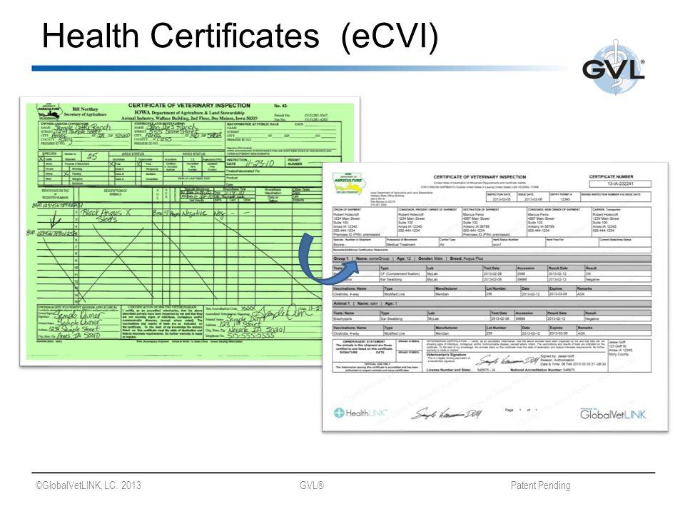 ©GlobalVetLINK, LC. 2013 GVL® Patent Pending Health Certificates (eCVI)
