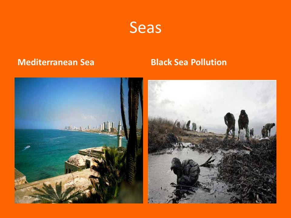 Seas Mediterranean SeaBlack Sea Pollution