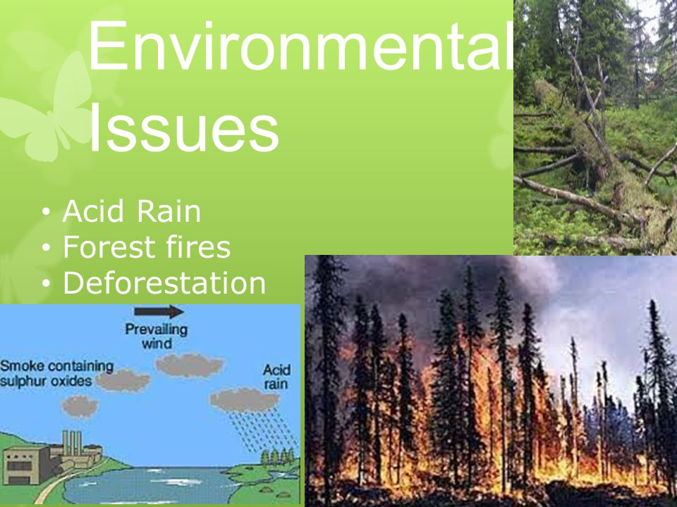 Environmental Issues Acid Rain Forest fires Deforestation