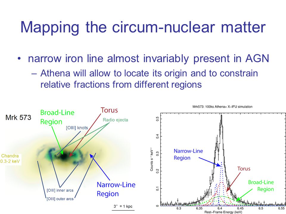 Mapping the circum-nuclear matter narrow iron line almost invariably present in AGN –Athena will allow to locate its origin and to constrain relative fractions from different regions