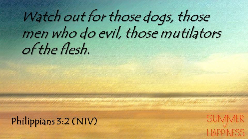 Philippians 3:2 (NIV) Watch out for those dogs, those men who do evil, those mutilators of the flesh.