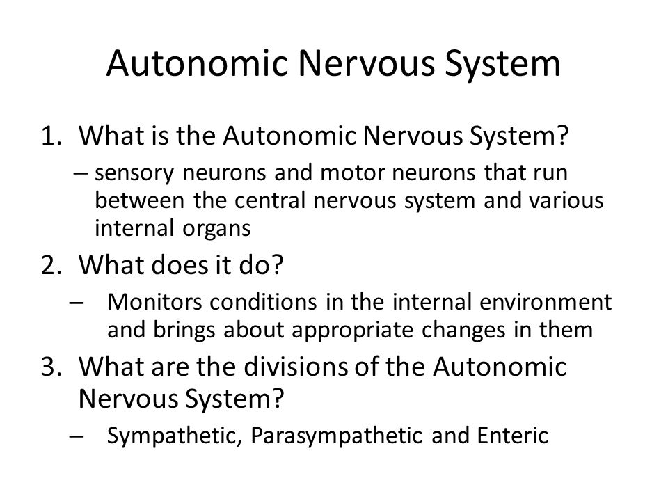 Autonomic Nervous System 1.What is the Autonomic Nervous System? – sensory neurons and motor neurons that run between the central nervous system and v