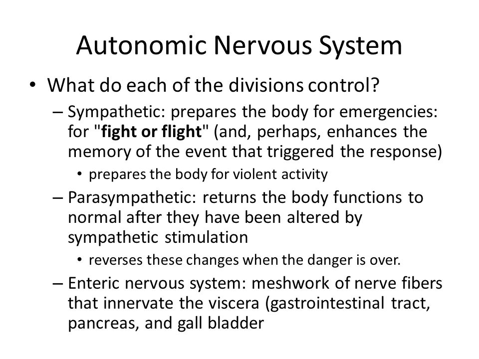 Autonomic Nervous System What do each of the divisions control? – Sympathetic: prepares the body for emergencies: for