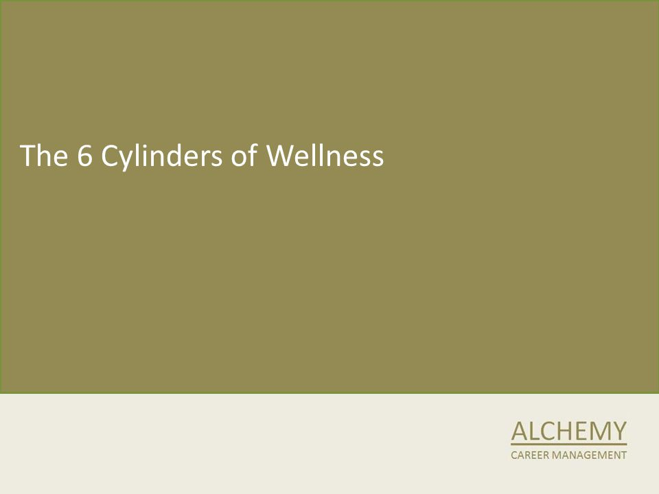The 6 Cylinders of Wellness
