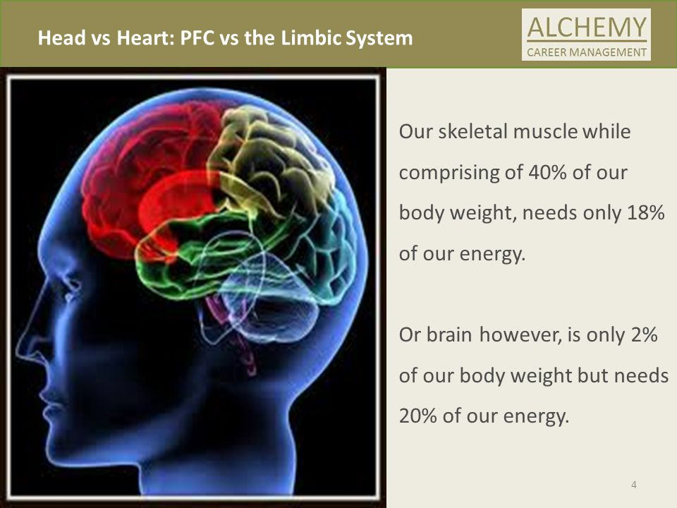 Head vs Heart: PFC vs the Limbic System 4 Our skeletal muscle while comprising of 40% of our body weight, needs only 18% of our energy.