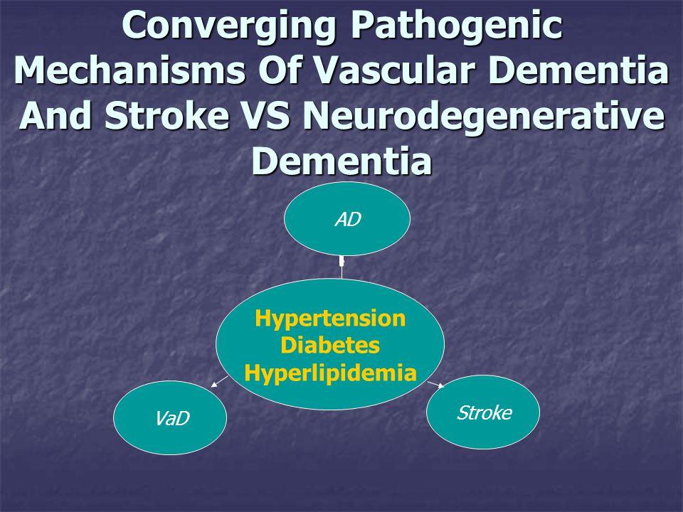 Converging Pathogenic Mechanisms Of Vascular Dementia And Stroke VS Neurodegenerative Dementia Hypertension Diabetes Hyperlipidemia ADStrokeVaD