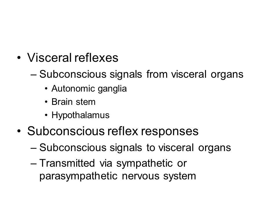 Visceral reflexes –Subconscious signals from visceral organs Autonomic ganglia Brain stem Hypothalamus Subconscious reflex responses –Subconscious sig