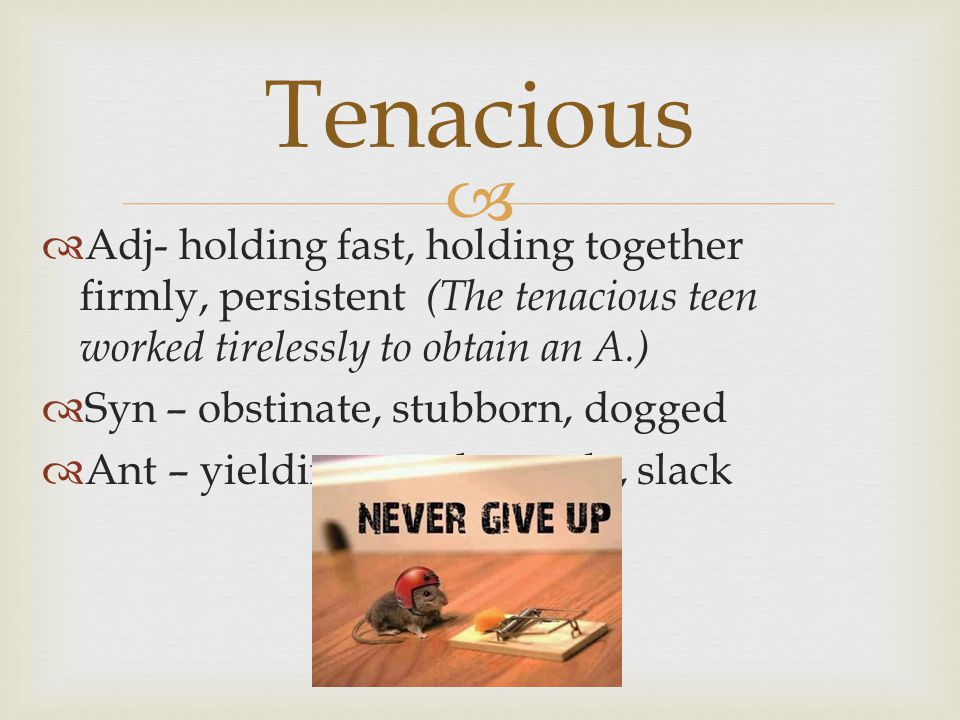   Adj- holding fast, holding together firmly, persistent (The tenacious teen worked tirelessly to obtain an A.)  Syn – obstinate, stubborn, dogged  Ant – yielding, weak, gentle, slack Tenacious