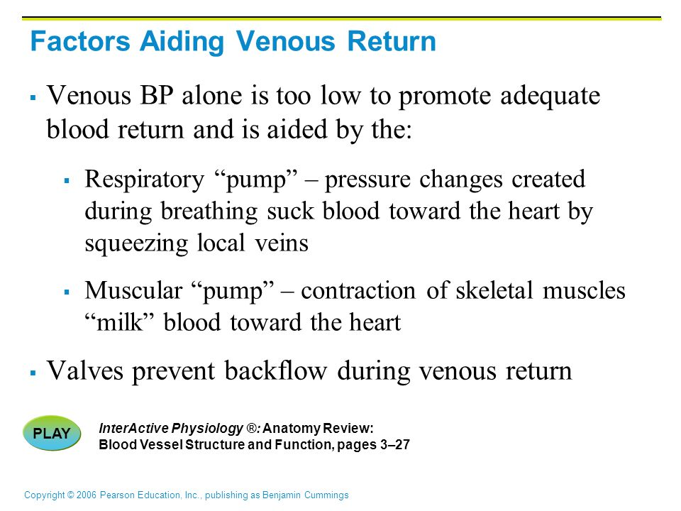 Copyright © 2006 Pearson Education, Inc., publishing as Benjamin Cummings Factors Aiding Venous Return  Venous BP alone is too low to promote adequate blood return and is aided by the:  Respiratory pump – pressure changes created during breathing suck blood toward the heart by squeezing local veins  Muscular pump – contraction of skeletal muscles milk blood toward the heart  Valves prevent backflow during venous return PLAY InterActive Physiology ®: Anatomy Review: Blood Vessel Structure and Function, pages 3–27
